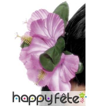 Rose style hawaï mauve cheveux