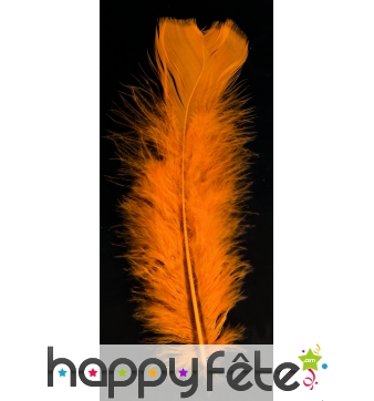 Sachet 100 plumes orange pied plat 15 cm