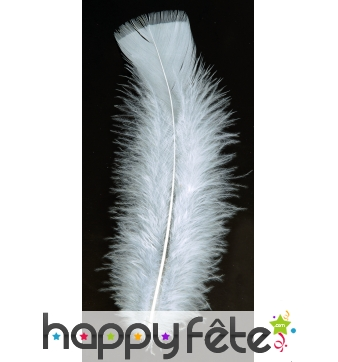 Sachet 50 plumes blanches pied plat 10 cm