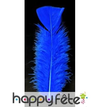 Sachet 50 plumes bleues pied plat 10 cm
