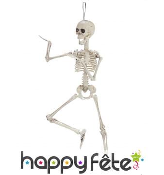 Squelette articulé de 48cm en plastique