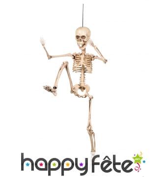 Squelette articulée de 50cm