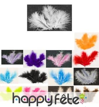Sachet de 20 plumes décoratives
