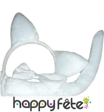 Set de chat blanc