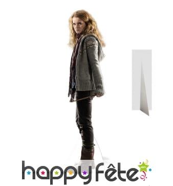 Silhouette de Hermione, Harry Potter