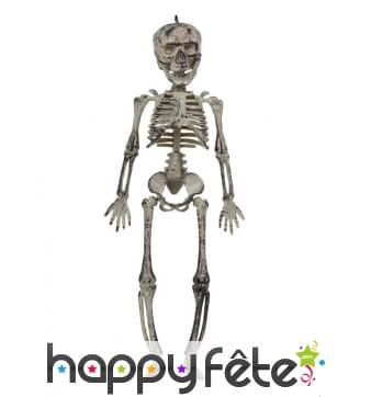 Suspension de petit squelette, 30 cm
