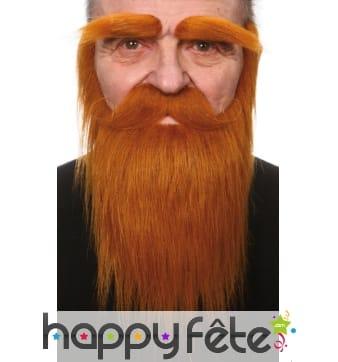 Sourcils, moustaches et barbe rousse