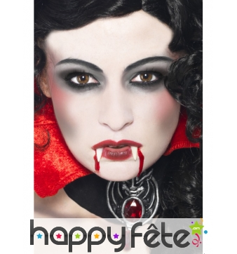 Set maquillage vampire
