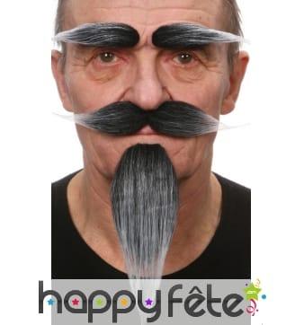 Set, petite barbe, moustaches, sourcils poivre sel