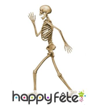 Squelette qui marche en carton de 94cm