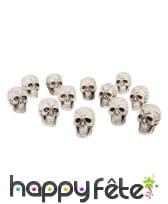 12 crânes de 4 x 3cm
