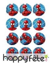 12 Décos pour biscuits Spiderman de 5,8 cm, amidon