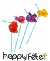 12 pailles décorée d'une fleur Hawaienne