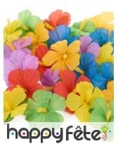 24 fleurs hawaïennes multicolores en tissu