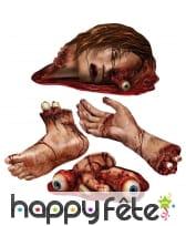 4 parties du corps en sang et en carton
