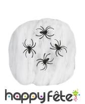 50g de toile d'araignée avec 3 araignées de 4cm, image 1