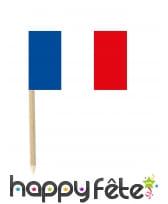50 mini-piques apéritifs drapeau France