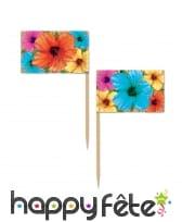 50 Pics apéritifs fleurs d'hibiscus