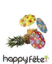 6 parapluies cocktails hibiscus