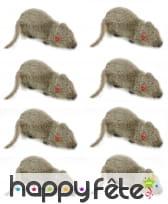 8 fausses souris de 5cm, image 1