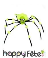 Araignée avec tête de mort de 70cm, image 1