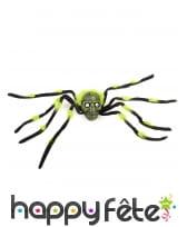 Araignée avec tête de mort de 70cm