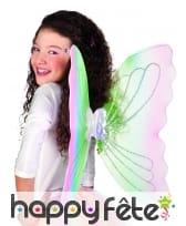 Ailes de fee multicolores, image 1