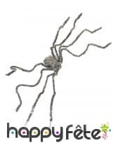 Araignée grise de 160cm