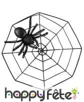 Araignée noire avec paillettes et toile