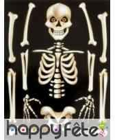 Autocollant squelette pour fenêtre