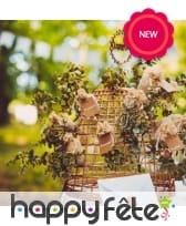 Bouquet d'eucalyptus, image 2