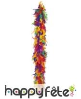 Boa de plumes multicolores
