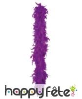 Boa de plumes violettes