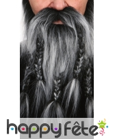 Barbe-moustaches de barbare poivre et sel