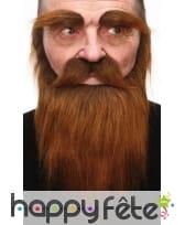 Barbe, moustache et sourcils chatain