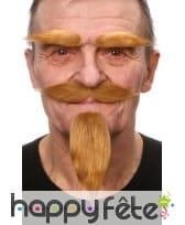 Barbiche, moustaches et sourcils blonds