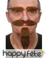 Barbichette, moustaches et sourcils chatains