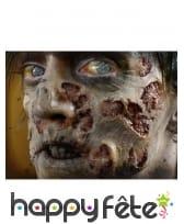 Blessures pourries de zombie par transfert à l eau