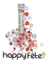 Canon a confettis petales de rose