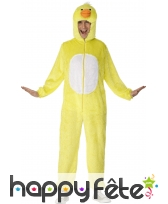 Costume canard