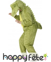 Costume crocodile
