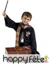 Coffre costume de Harry Potter pour enfant
