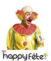 Crâne chauve de clown et cheveux colorés