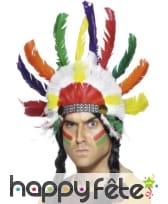 Chapeau chef indien