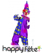 Costume clown mauve
