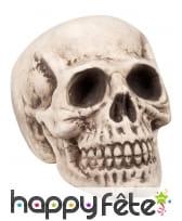 Crâne décoratif, 31 cm