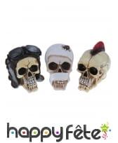 Crâne décoratif aléatoire de 14cm