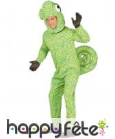 Combinaison de caméléon vert pour adulte