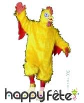 Costume de coq