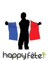 Cape drapeaux Français, image 1